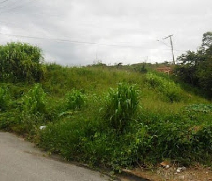 Terreno no Jardim Alvorada é notificado pela prefeitura