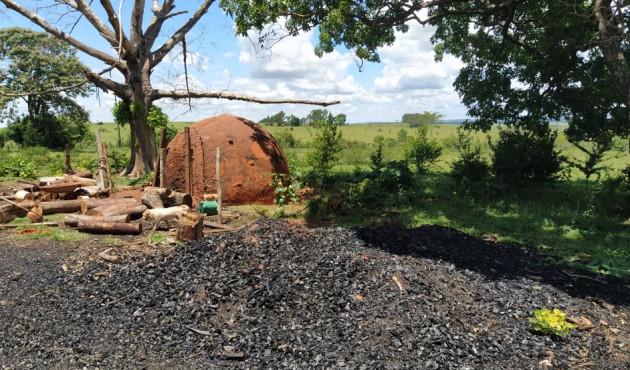 Fiscalização da Polícia Ambiental apreende 600 quilos de carvão ilegal em Piquerobi
