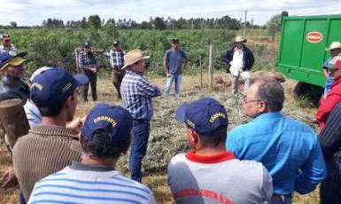 Representantes de Bataguassu participam de Dia de Campo em Nova Andradina